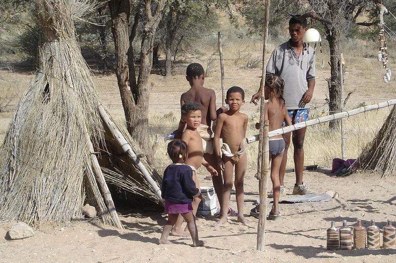 Das südliche afrika sümpfe wüsten und traumhafte küsten